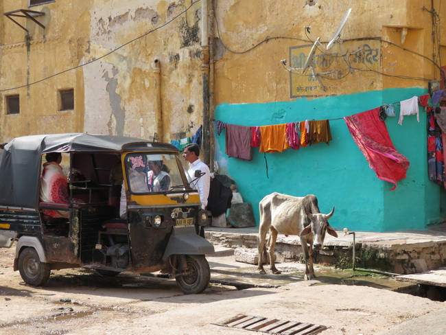 Bundi, l'Inde cool