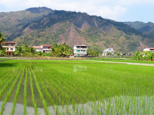 Taïwan Road Trip